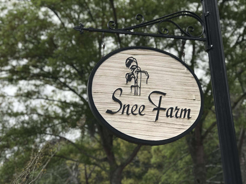 Snee Farm Homes For Sale - 1047 Royalist, Mount Pleasant, SC - 45