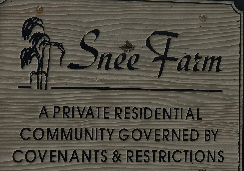 Snee Farm Homes For Sale - 1047 Royalist, Mount Pleasant, SC - 3