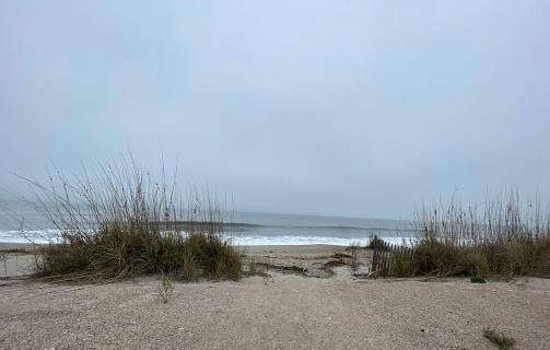 None Lots For Sale - 410 Palmetto Boulevard, Edisto Beach, SC - 5