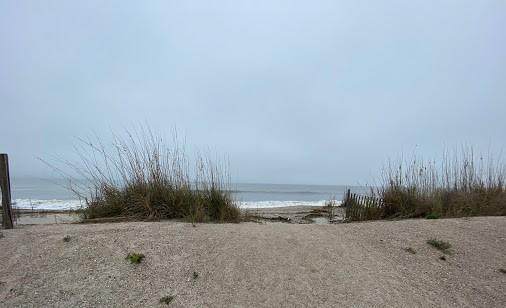 None Lots For Sale - 410 Palmetto Boulevard, Edisto Beach, SC - 6