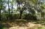 Expansive Beautiful Grounds