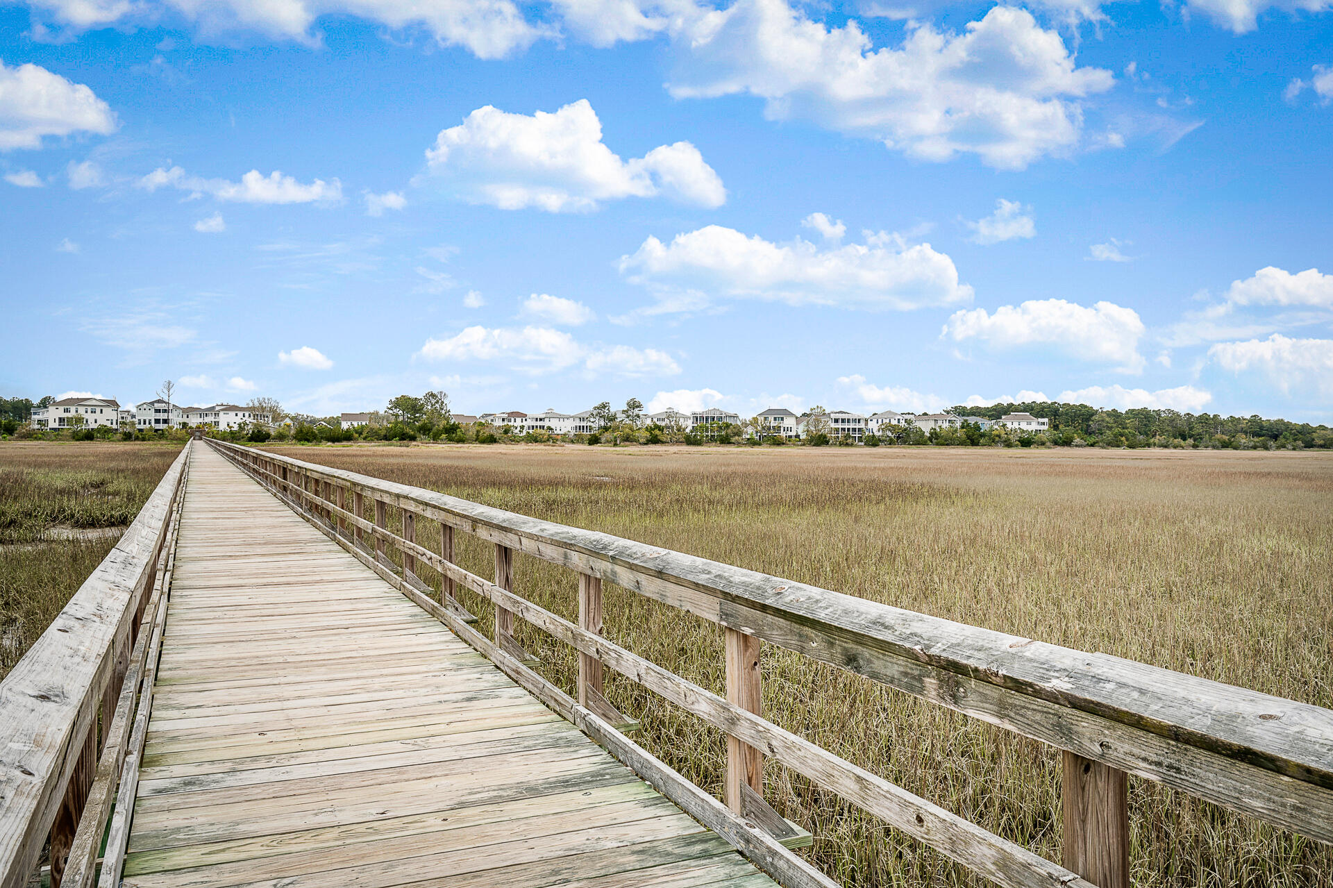 Oyster Point Homes For Sale - 2213 Skyler, Mount Pleasant, SC - 20