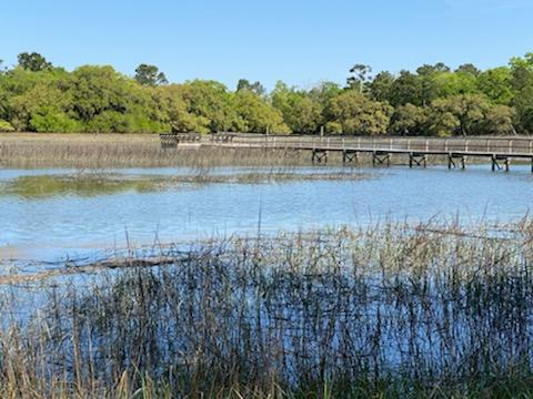 1358 Polly Point Road Wadmalaw Island, SC 29487