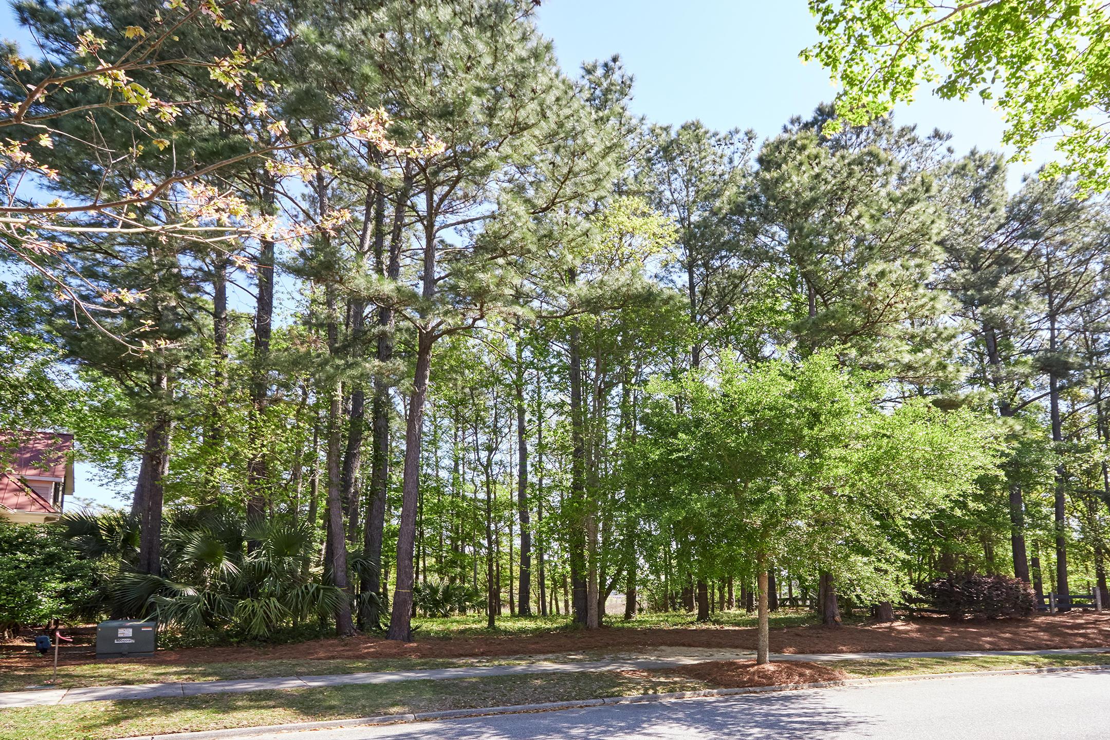 Daniel Island Park Lots For Sale - 334 Ralston Creek, Charleston, SC - 30
