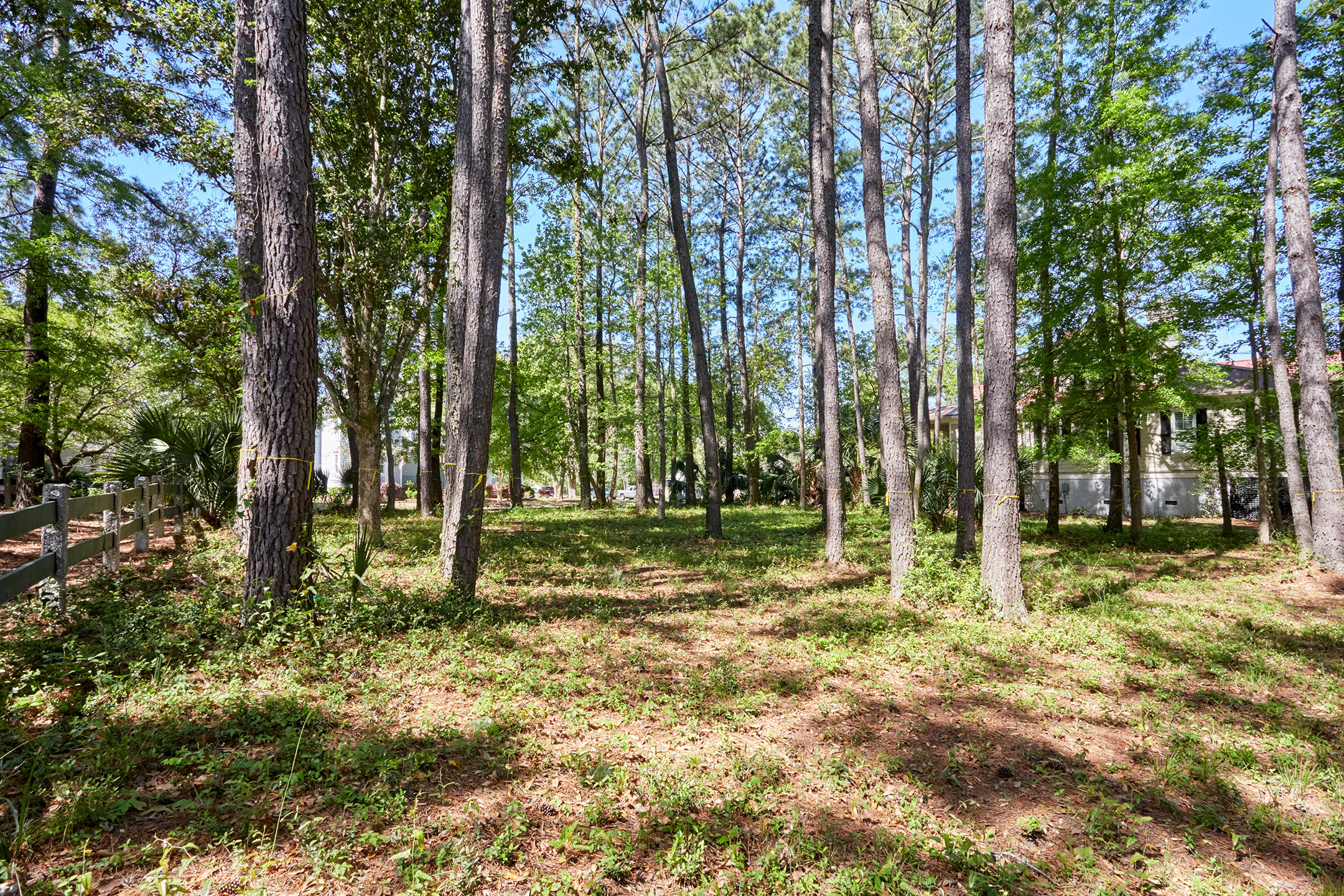 Daniel Island Park Lots For Sale - 334 Ralston Creek, Charleston, SC - 23