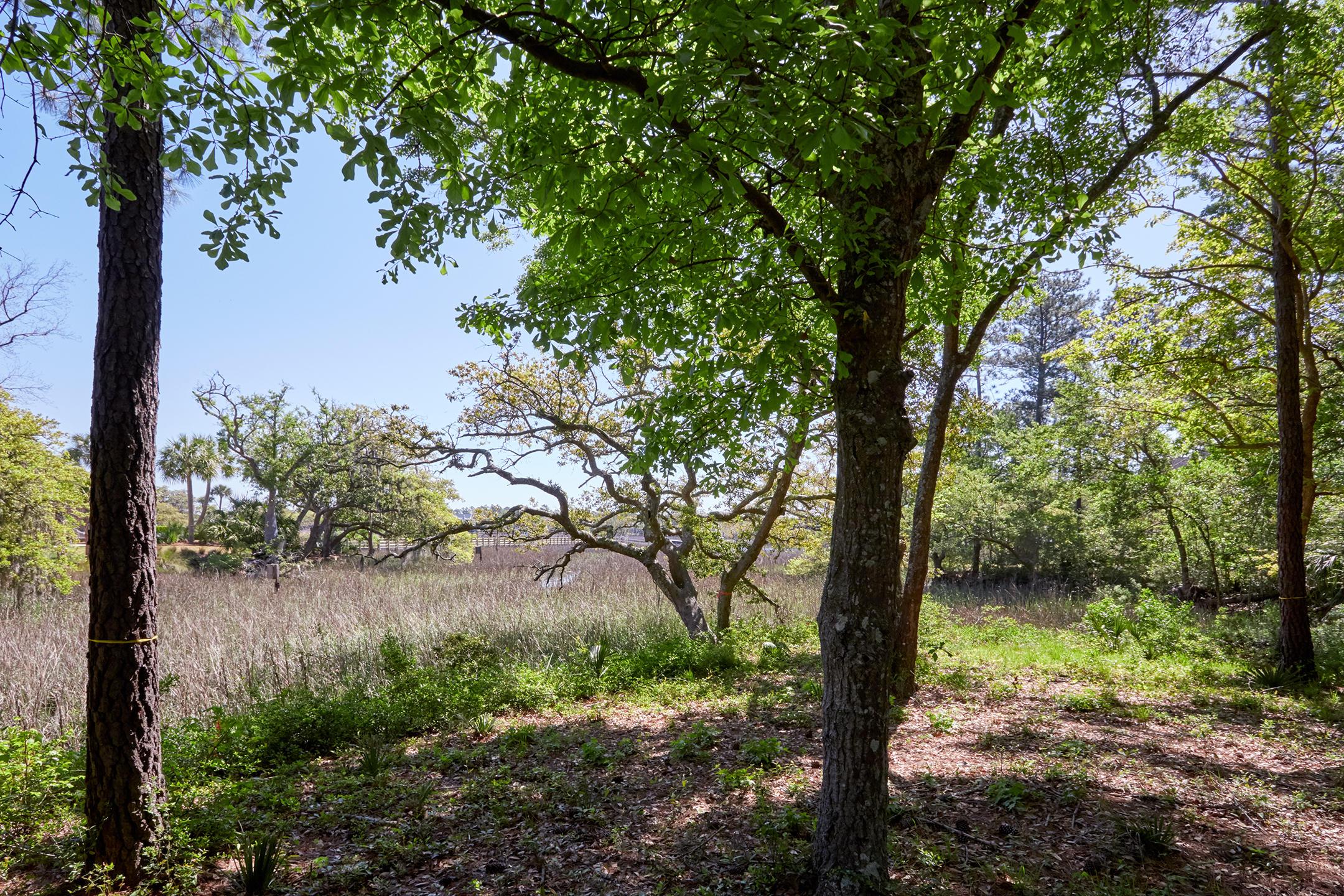 Daniel Island Park Lots For Sale - 334 Ralston Creek, Charleston, SC - 49
