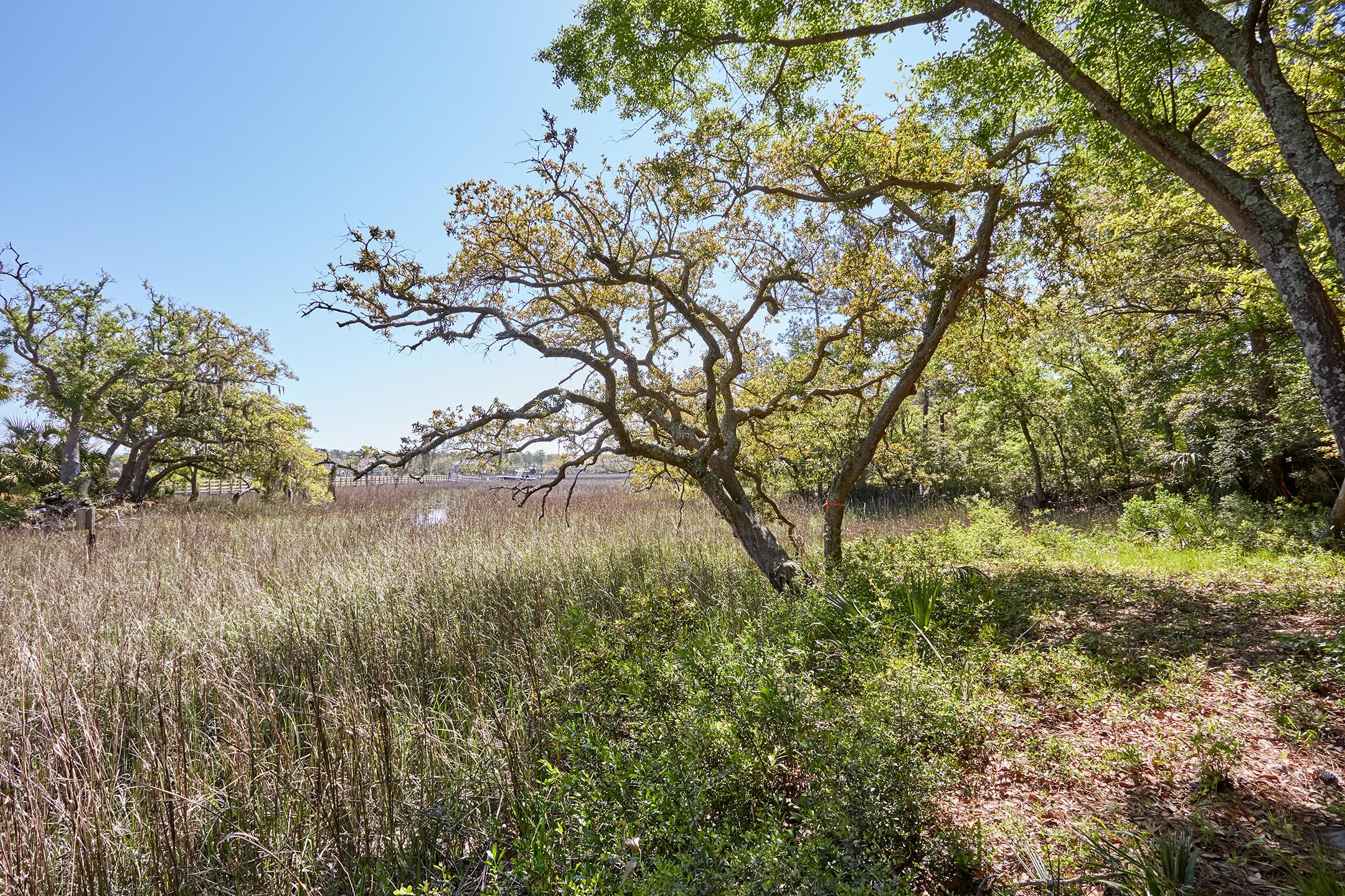 Daniel Island Park Lots For Sale - 334 Ralston Creek, Charleston, SC - 47