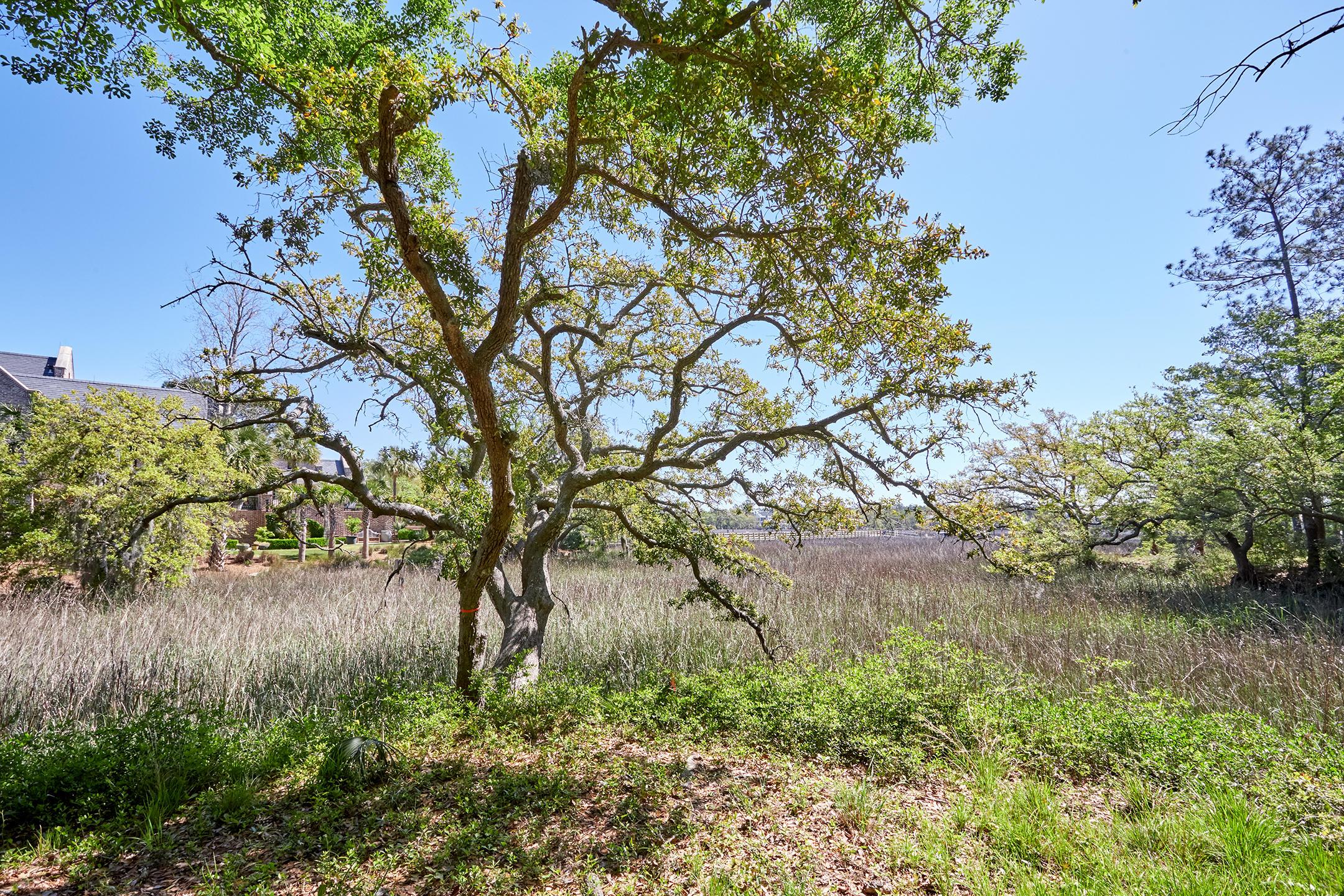 Daniel Island Park Lots For Sale - 334 Ralston Creek, Charleston, SC - 40