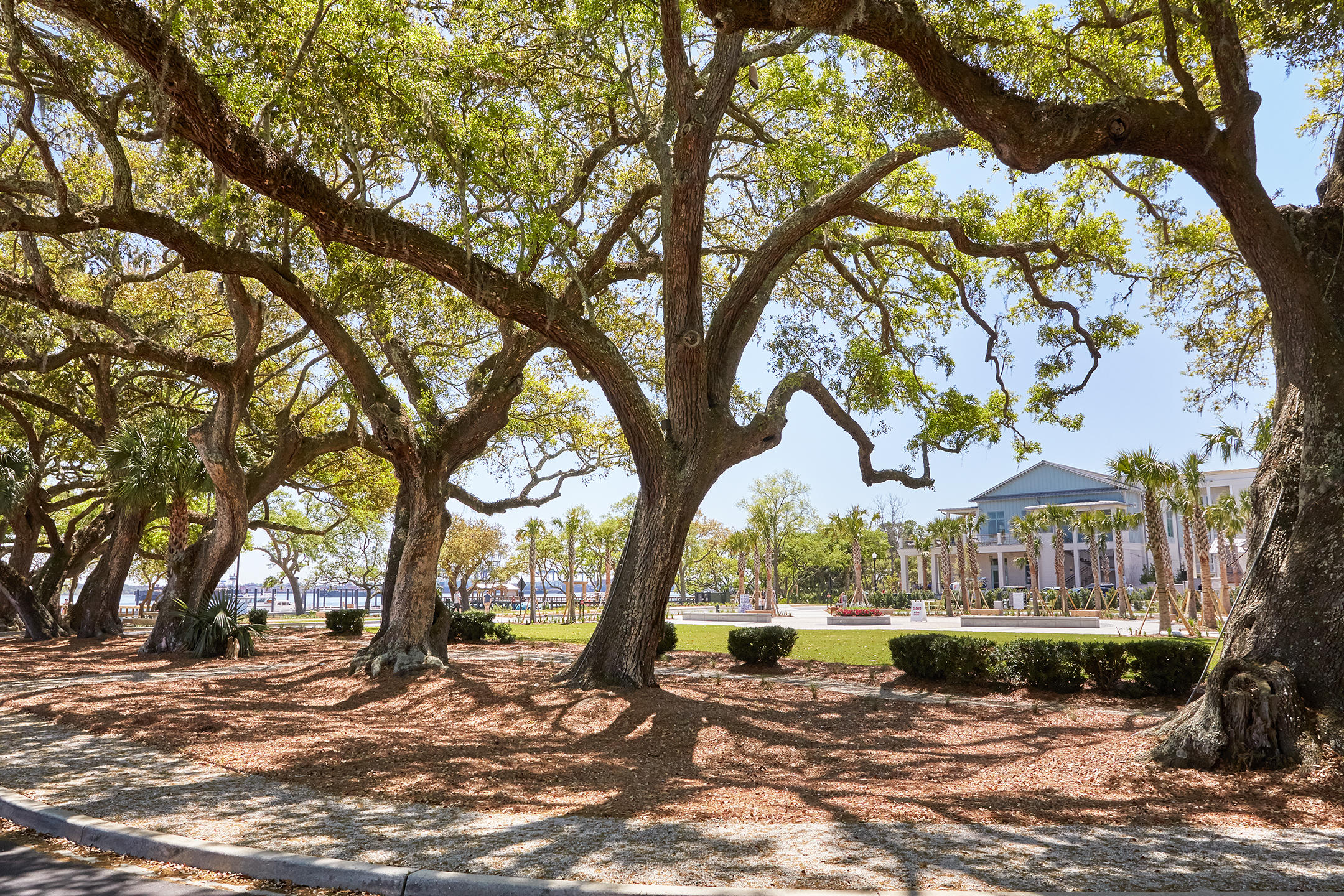 Daniel Island Park Lots For Sale - 334 Ralston Creek, Charleston, SC - 43