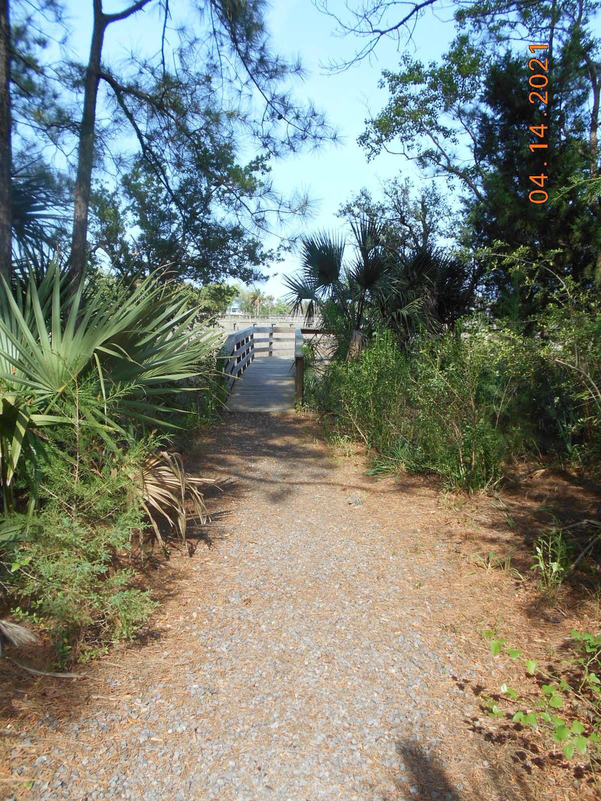 Beresford Creek Landing Homes For Sale - 1212 Winding Creek, Charleston, SC - 8
