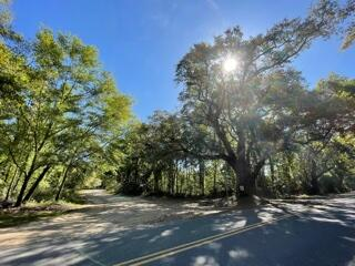Mossey Grove Ln Awendaw, SC 29429