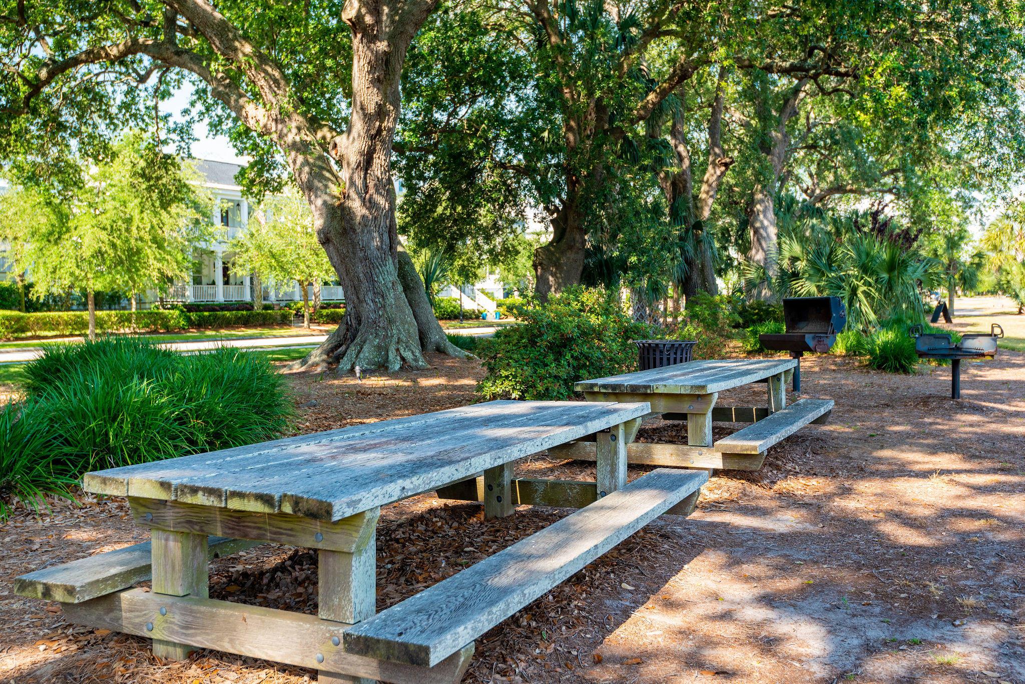 Daniel Island Park Lots For Sale - 221 Black Powder, Charleston, SC - 27