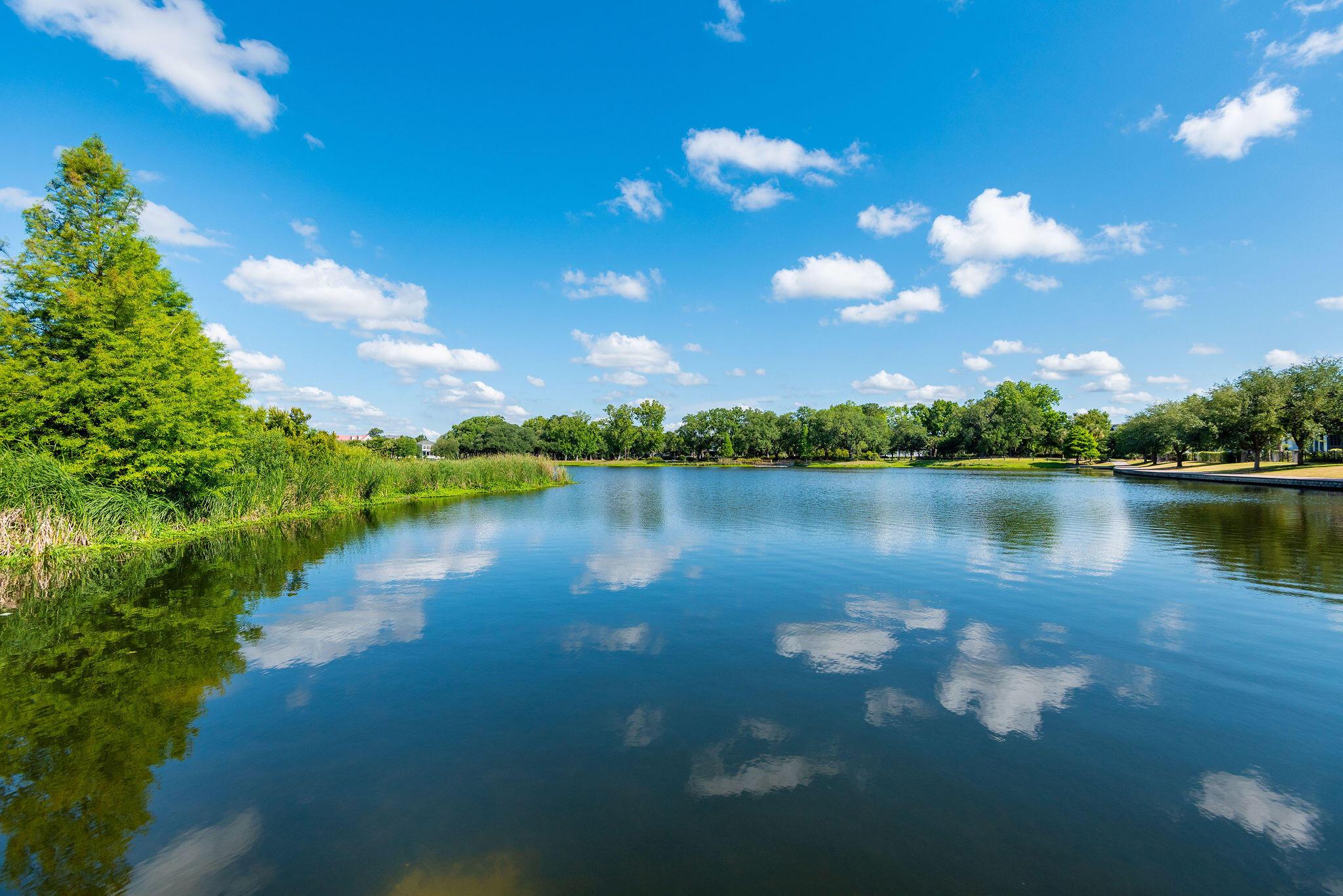 Daniel Island Park Lots For Sale - 221 Black Powder, Charleston, SC - 24