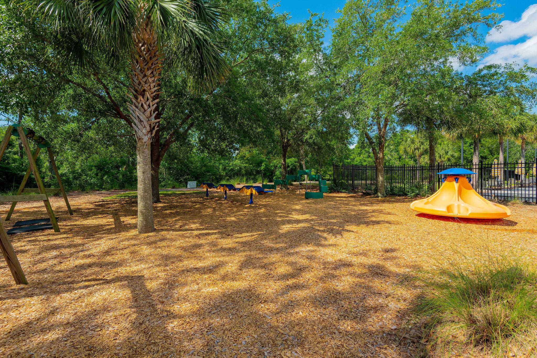 Daniel Island Park Lots For Sale - 221 Black Powder, Charleston, SC - 21
