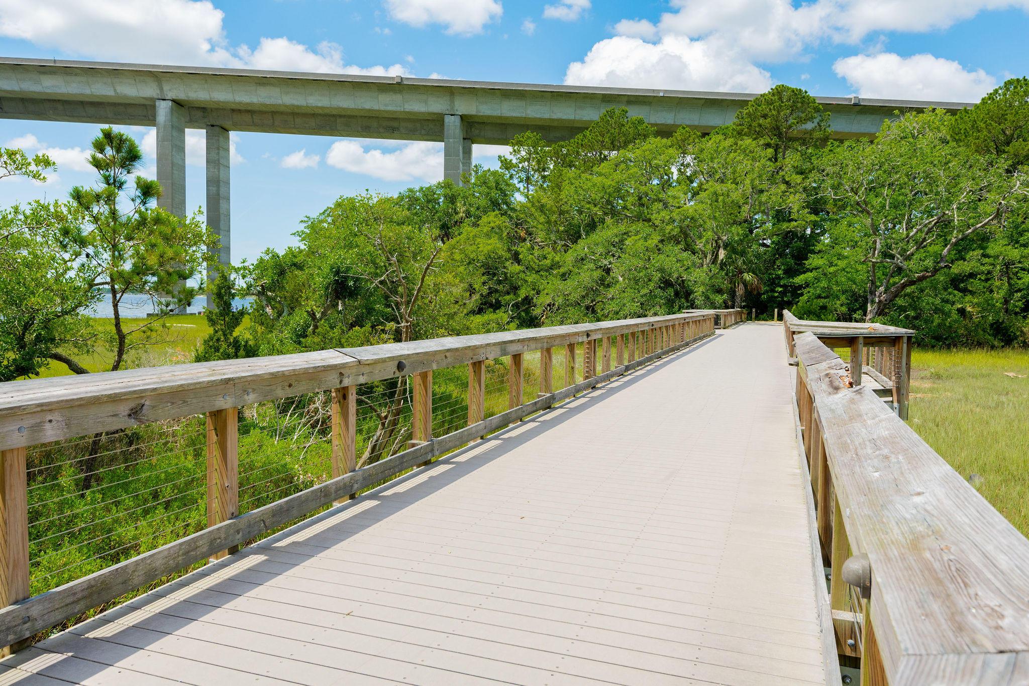 Daniel Island Park Lots For Sale - 221 Black Powder, Charleston, SC - 9
