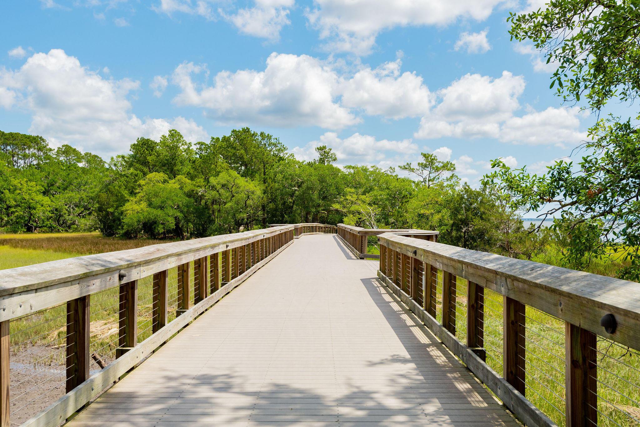 Daniel Island Park Lots For Sale - 221 Black Powder, Charleston, SC - 12