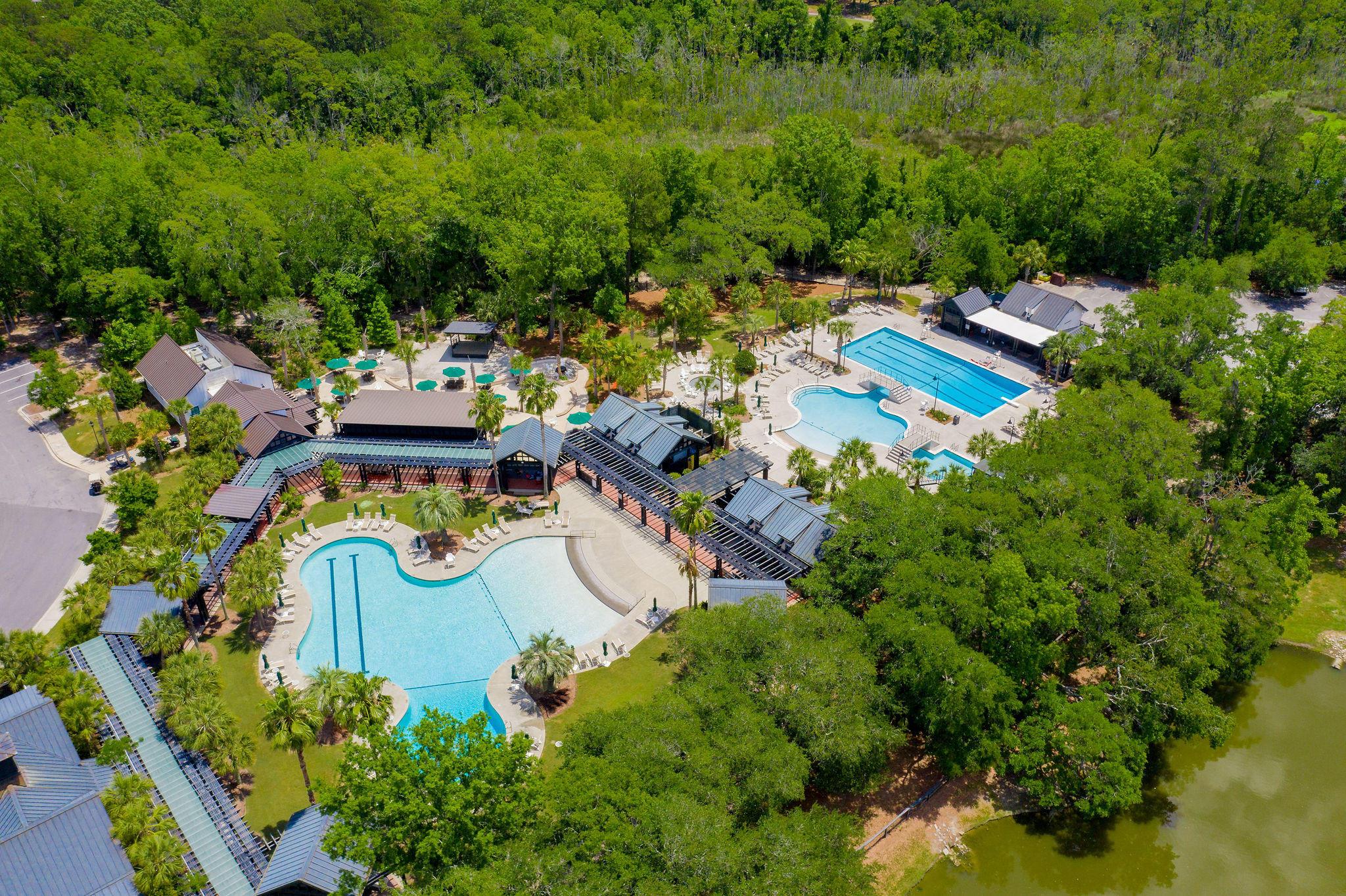 Daniel Island Park Lots For Sale - 221 Black Powder, Charleston, SC - 48