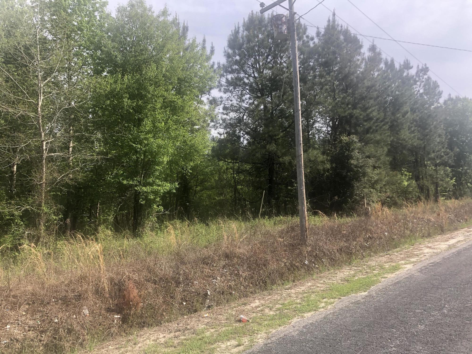 Johnsville Road Smoaks, SC 29481
