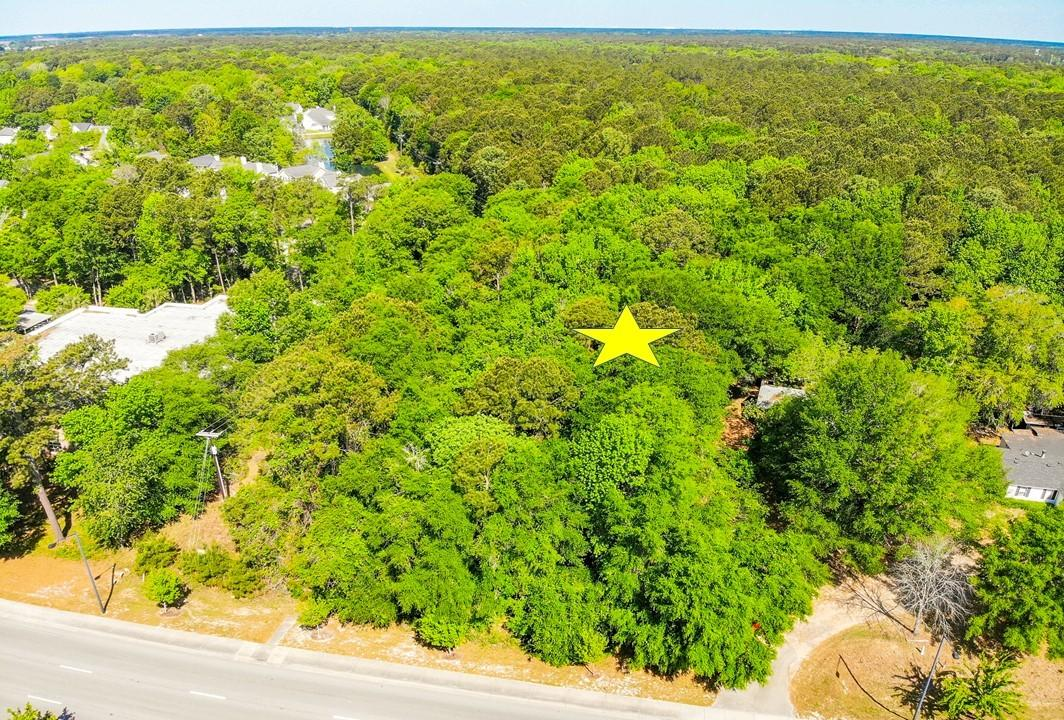 None Homes For Sale - 3170&3180 Highway 17, Mount Pleasant, SC - 23