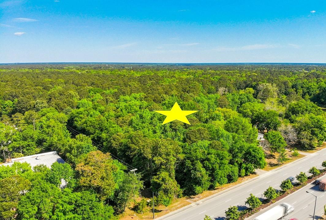 None Homes For Sale - 3170&3180 Highway 17, Mount Pleasant, SC - 25
