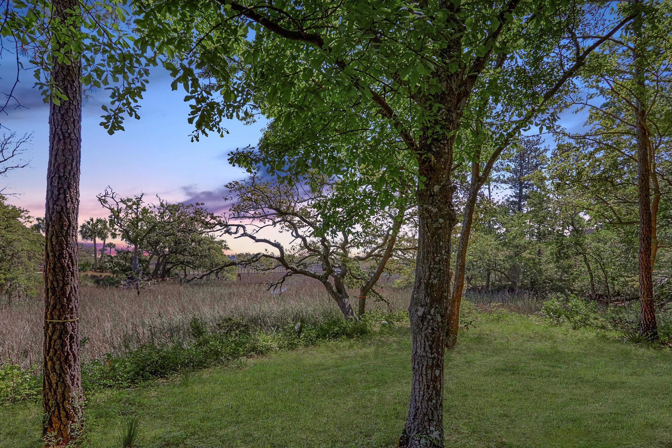 Daniel Island Park Lots For Sale - 334 Ralston Creek, Charleston, SC - 37