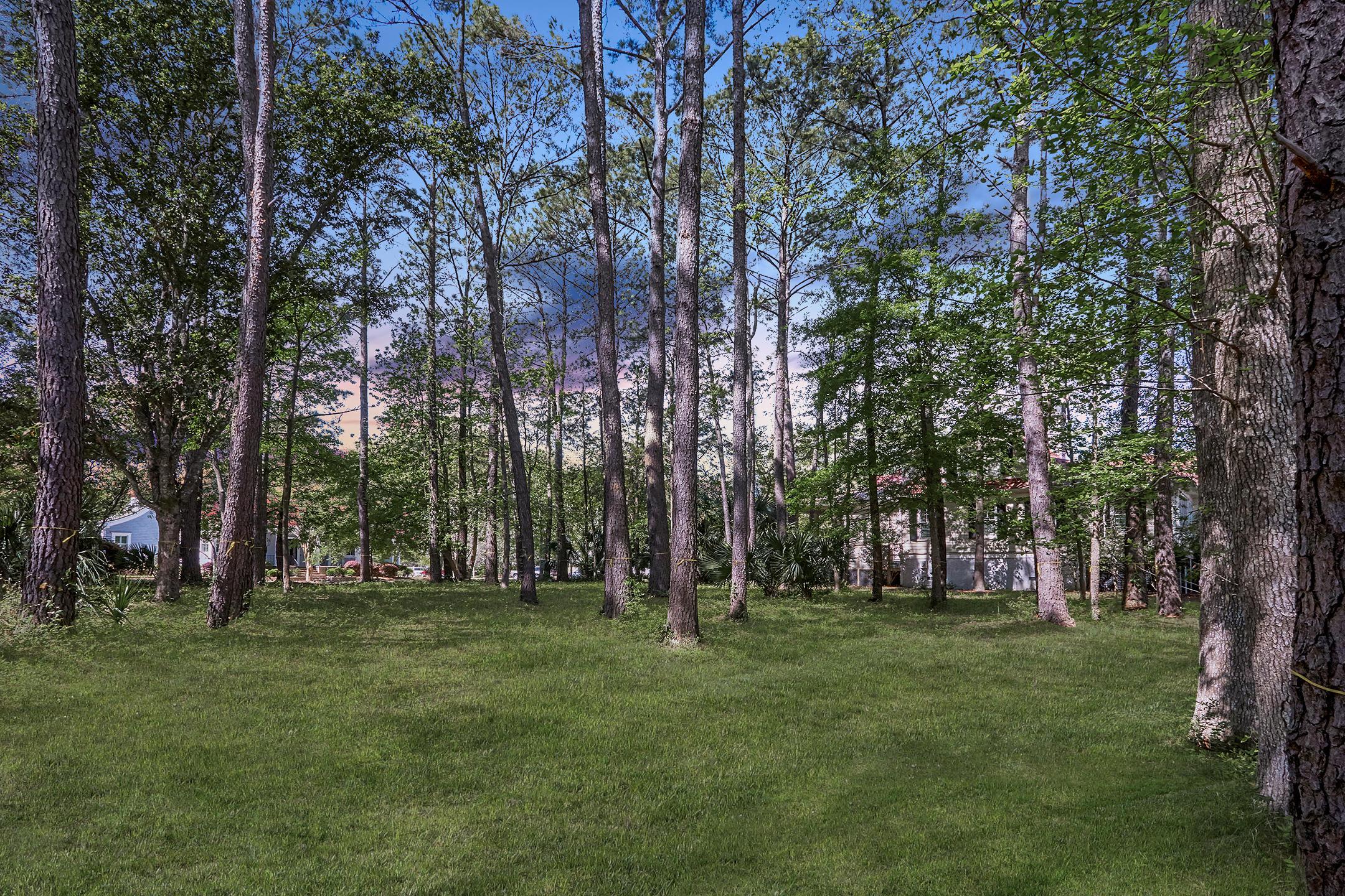 Daniel Island Park Lots For Sale - 334 Ralston Creek, Charleston, SC - 36