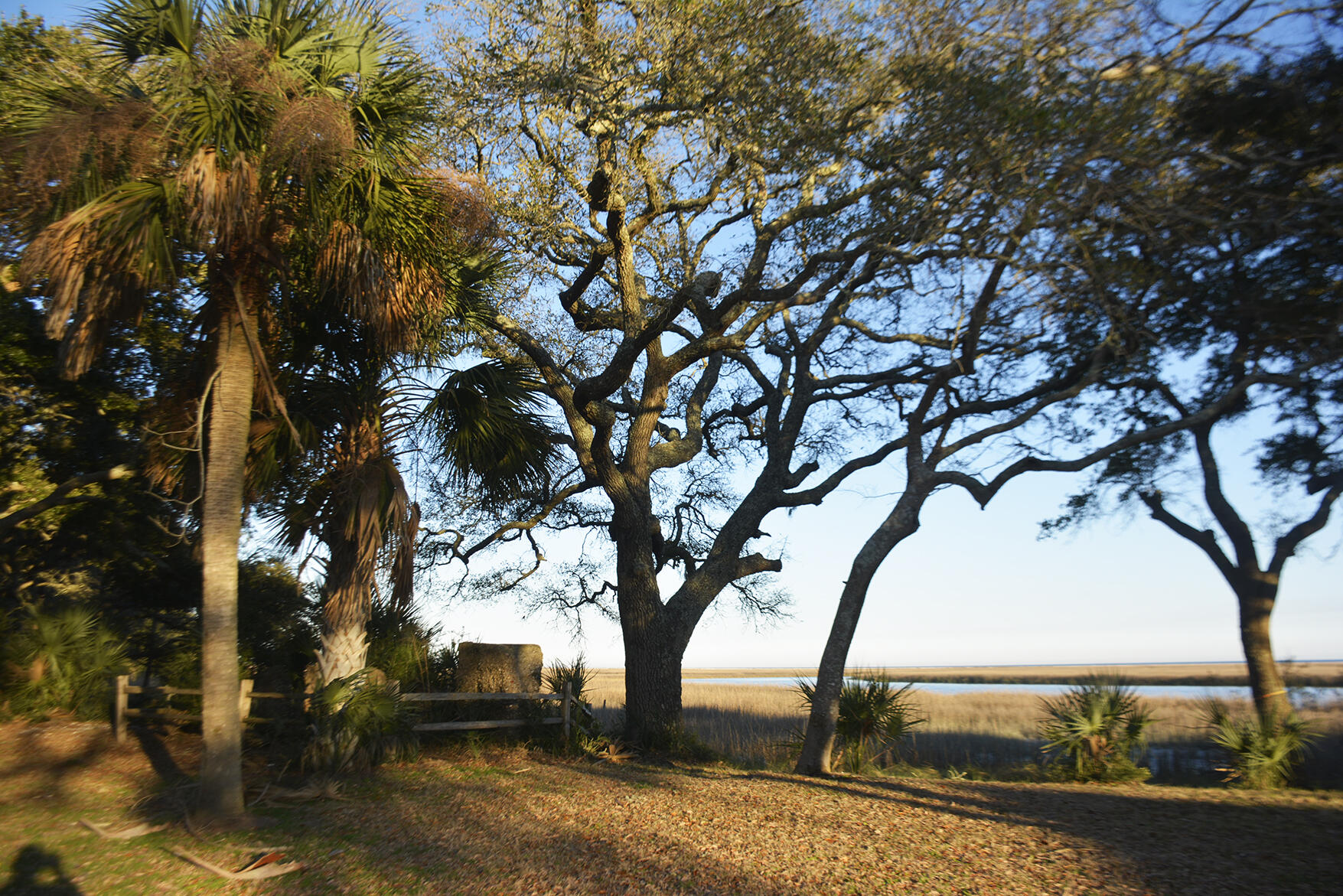 1199 Framptons Inlet Road Edisto Island, SC 29438