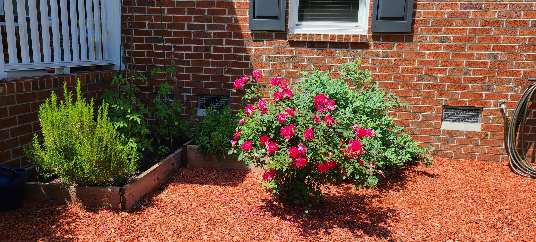 2 Lorne Court Charleston, SC 29414