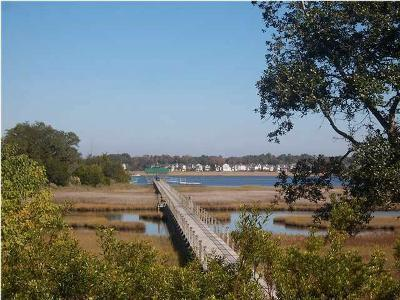 1821 Rushland Grove Lane Johns Island, SC 29455