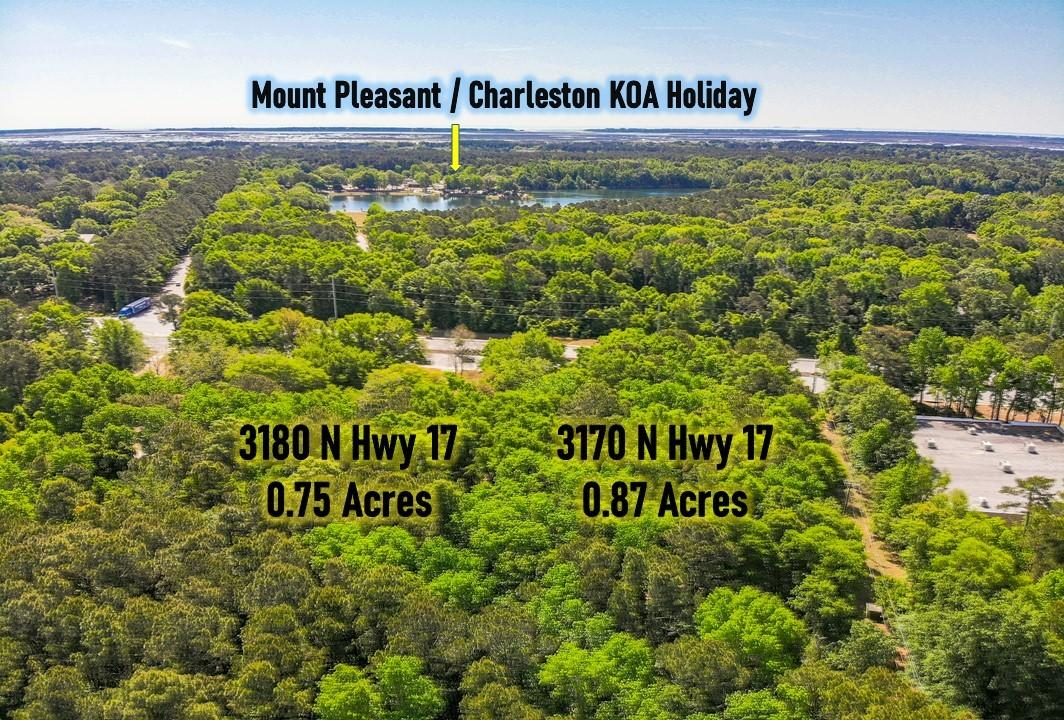 None Homes For Sale - 3170&3180 Highway 17, Mount Pleasant, SC - 0