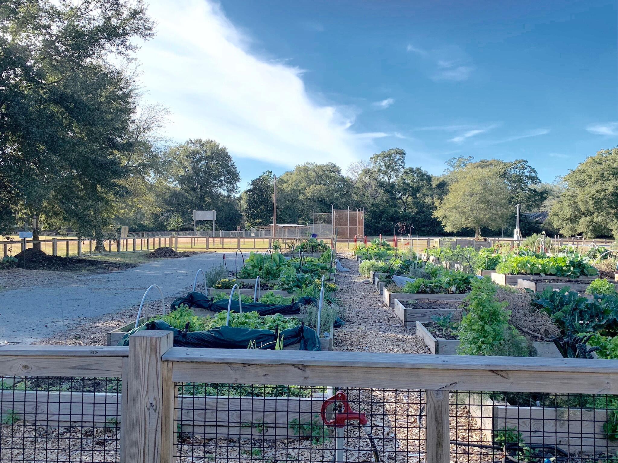 Riverland Terrace Homes For Sale - 2033 Frampton, Charleston, SC - 4