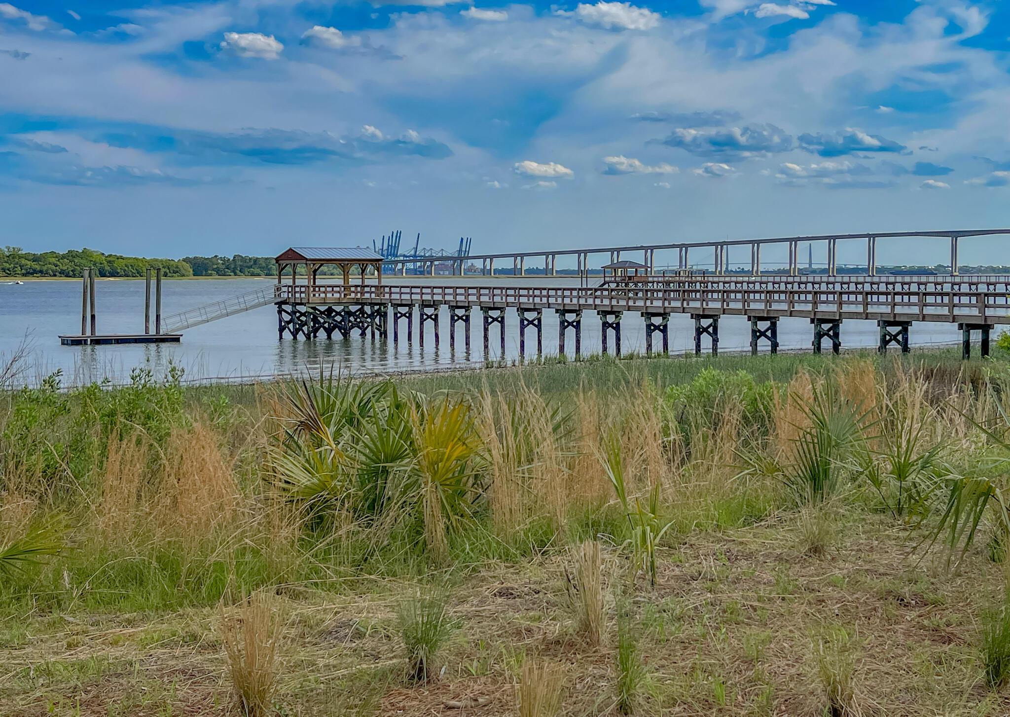 Daniel Island Lots For Sale - 229 Captain Goddard, Charleston, SC - 57