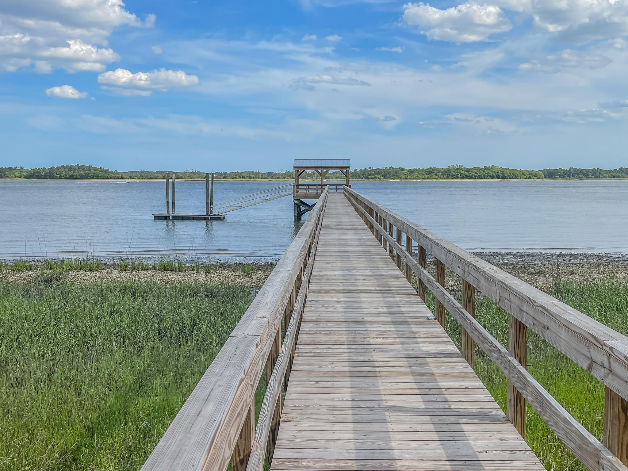 Daniel Island Lots For Sale - 229 Captain Goddard, Charleston, SC - 9