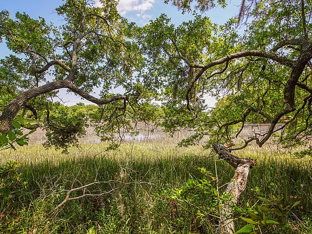 Parrot Bluff Homes For Sale - 711 Walkers Landing, Charleston, SC - 29