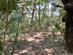 2144 Royal Pine, Seabrook Island, SC 29455