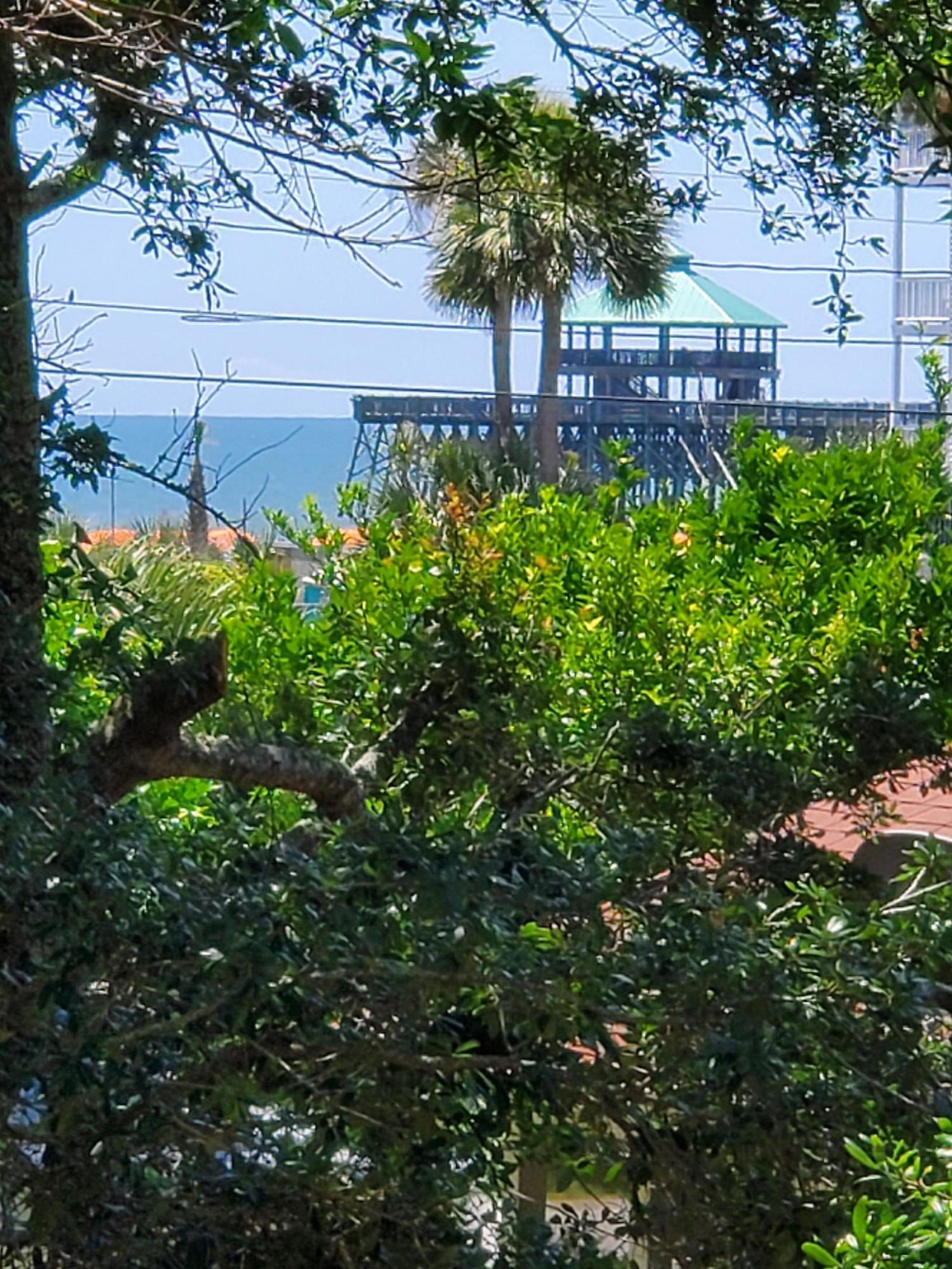 207 E Cooper Avenue Folly Beach, SC 29439