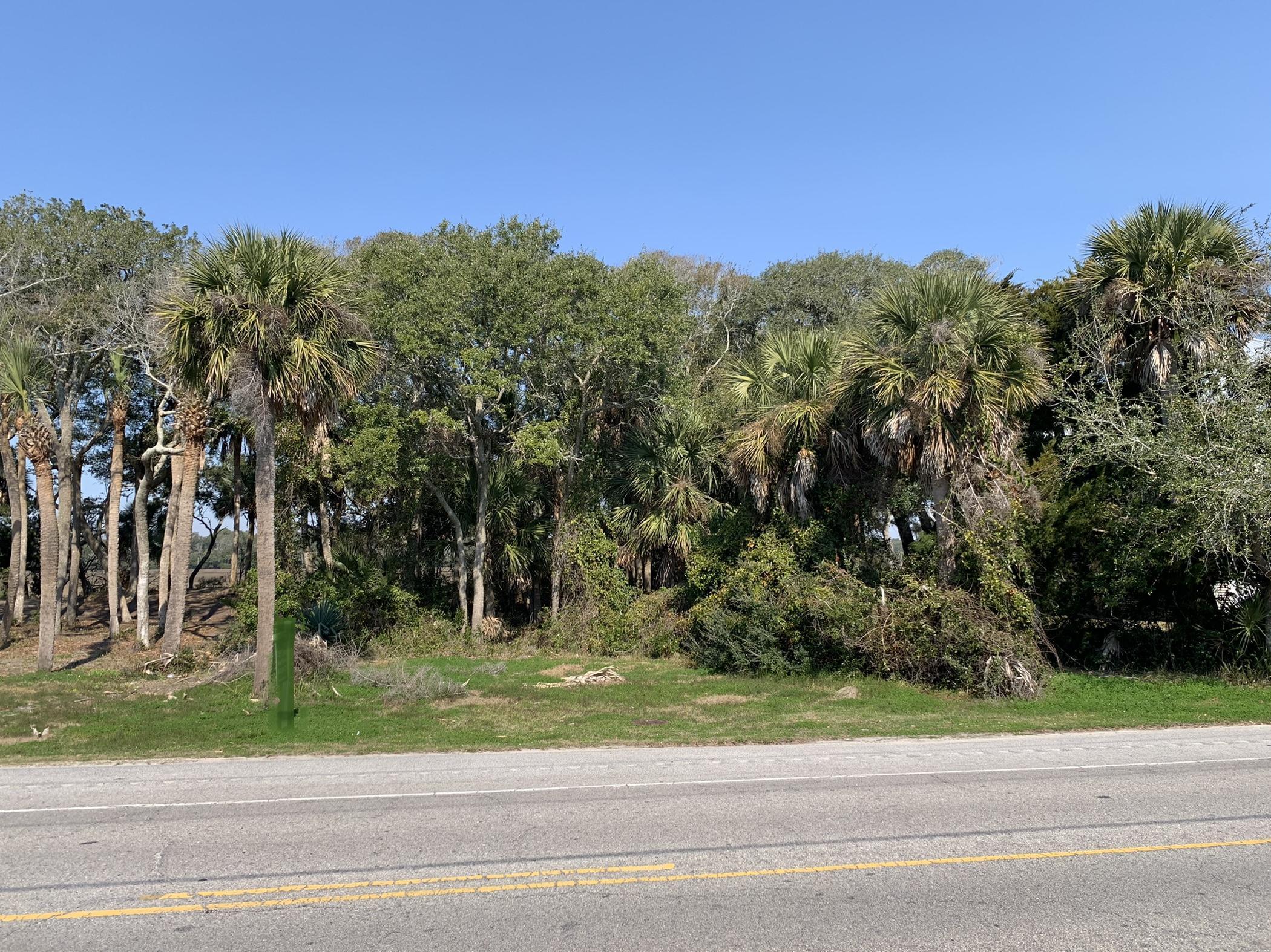 133 Jungle Road Edisto Island, SC 29438