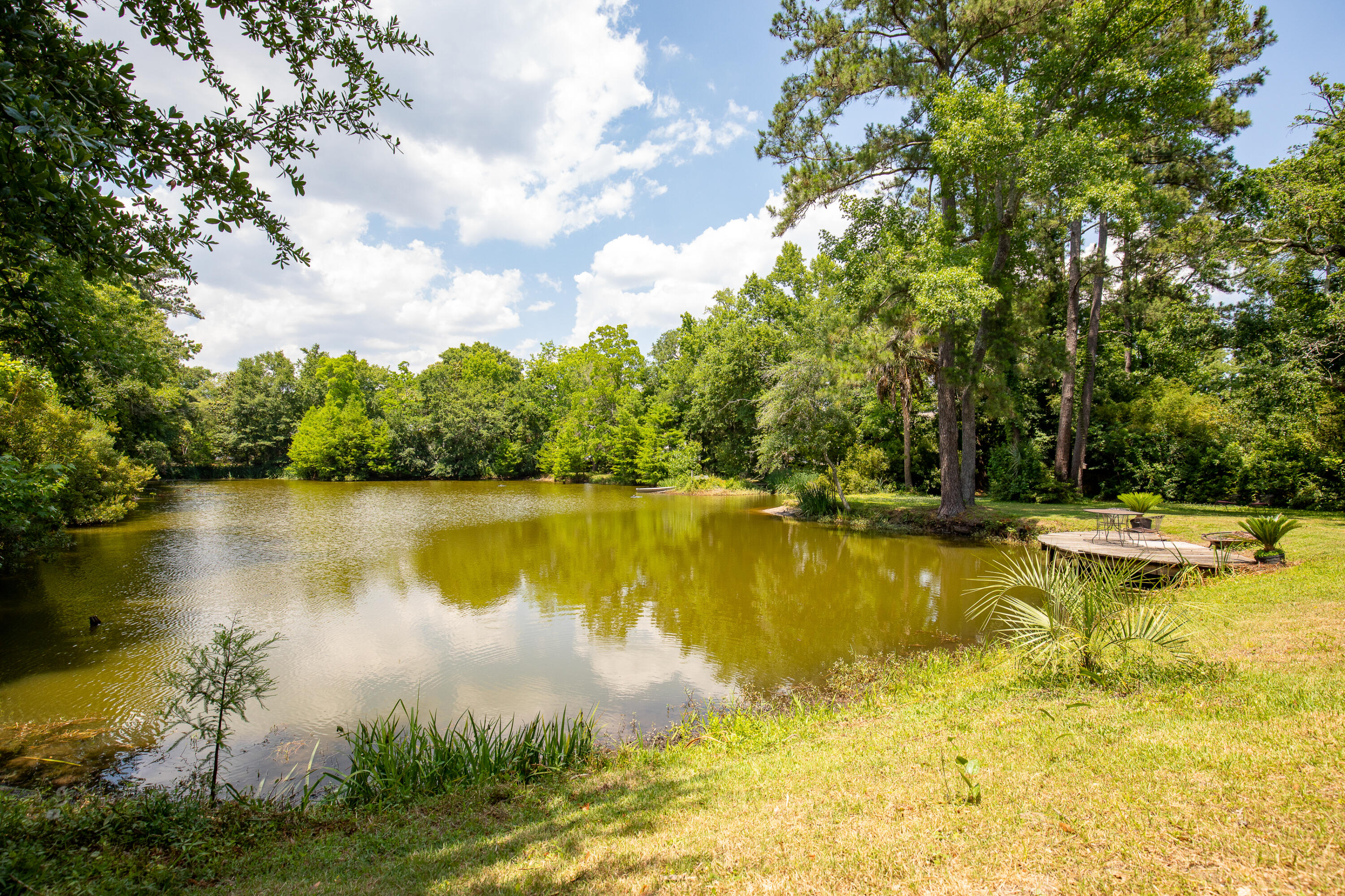 The Groves Homes For Sale - 949 Lakeview, Mount Pleasant, SC - 23