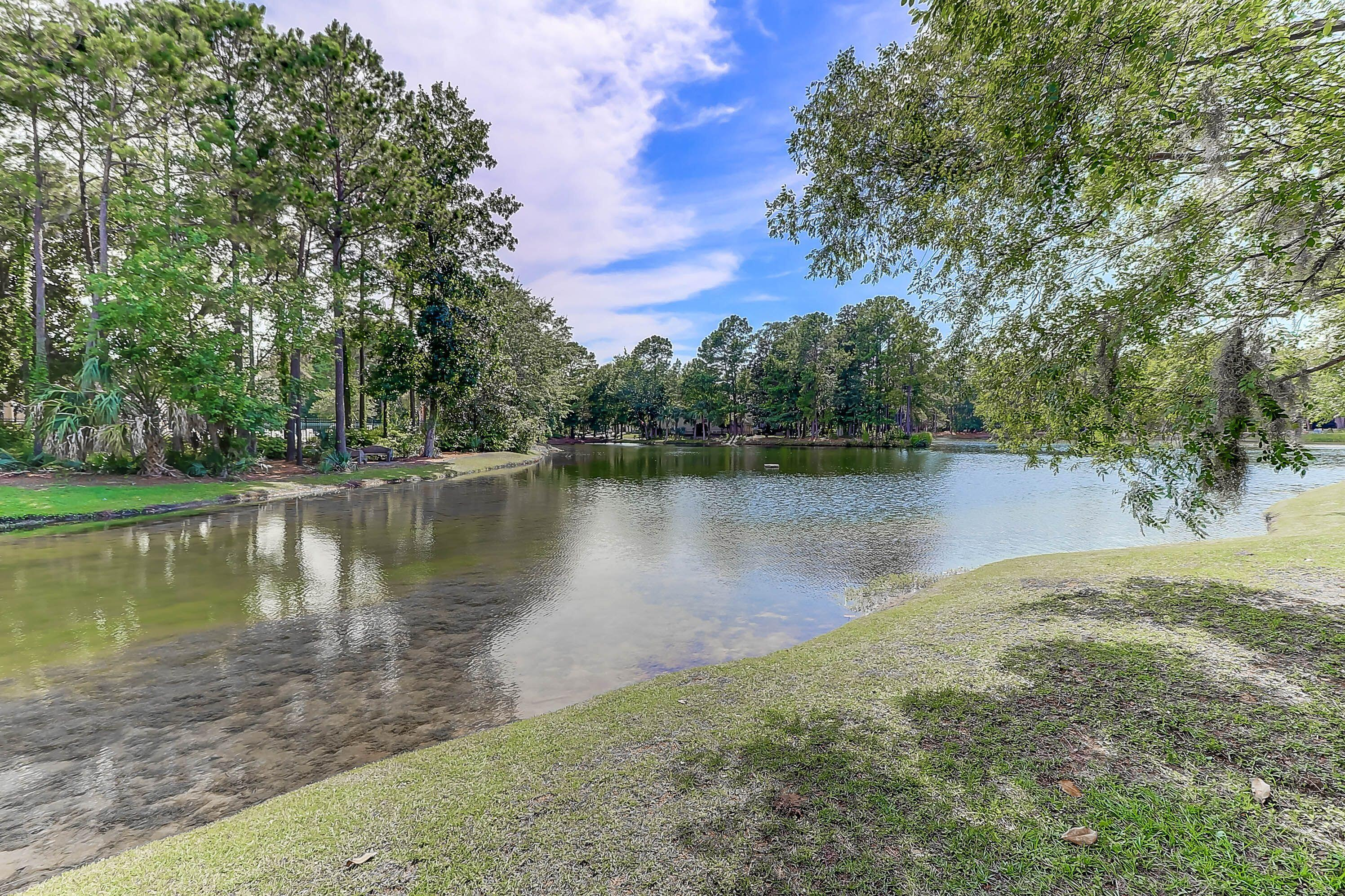 Seaside Farms Homes For Sale - 1479 Long Grove, Mount Pleasant, SC - 12