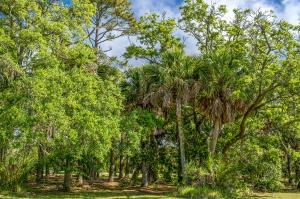 30 Planters Retreat, Edisto Island, SC 29438