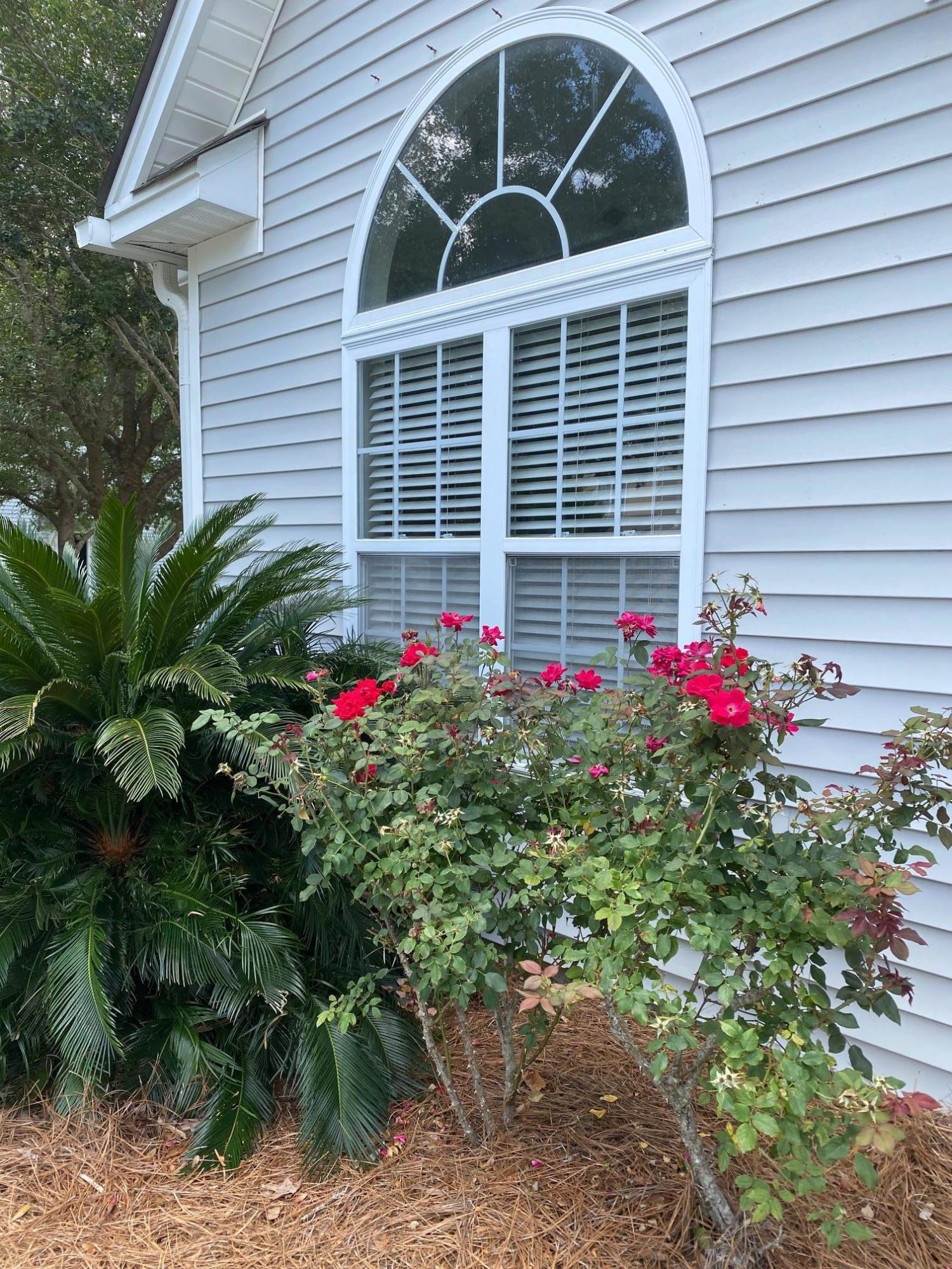 165 Dorothy Drive Charleston, SC 29414