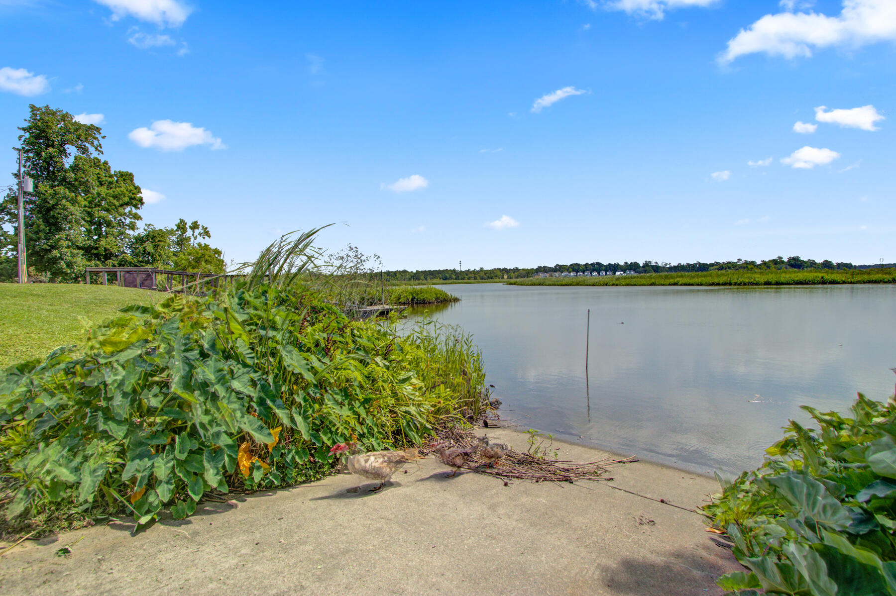 The Reserve at Old Point Homes For Sale - 6240 Old Point, Hanahan, SC - 28