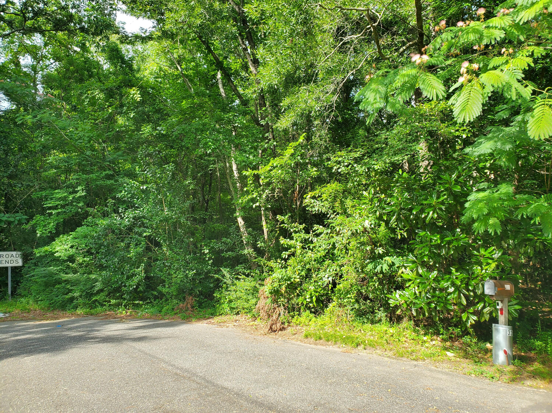 Jean Wells Drive Goose Creek, SC 29445
