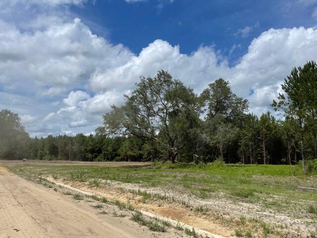 Bama Road UNIT (Lot 3) Cottageville, SC 29435