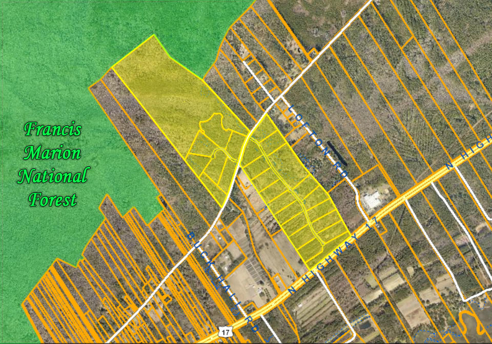 Ready-made development of 5+ acre lots just 18 minutes from Mt. Pleasant. Infrastructure already in place including access roads, lot subdivision (granted septic approval around 2007), and fencing and entrances. There are 23 building lots totalling 121 acres. An additional 112 acres of community space consists of 13.7 acres centralized community center (approximately 4.72 of high ground), 6.12 acre property between with a raised hill to buffer noise from hwy 17, and 92.38 acres bordering the Francis Marion National Forest that is mostly low and swampy. The development was originally planned as an equestrian-themed community with plans of a paddock in the community center and riding trails in the low-lying area. Today's buyers may be more interested in an addition of a pool, gym, and clubhouse built on the community center property. The choice is up to you! Change the name, reconfigure the lots, do as you please, but it's a rare opportunity with most of the work is already done for you and Seller Financing Available!