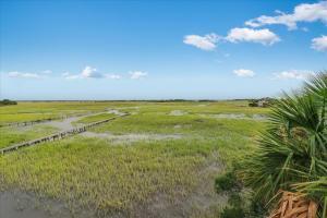 19 Marsh Island, Isle of Palms, SC 29451