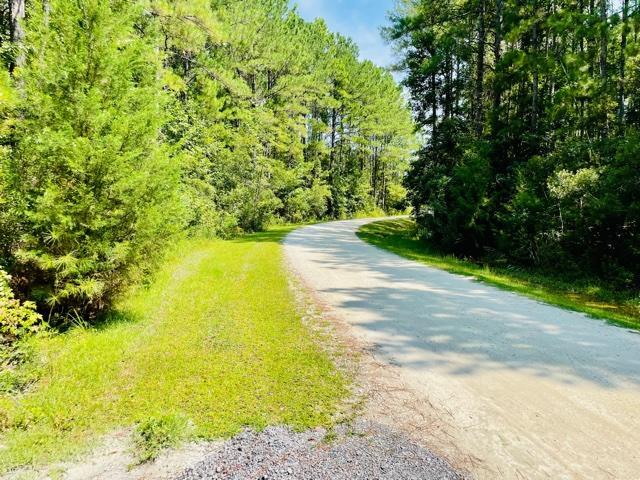 1041 Bridle Gate Trail Awendaw, SC 29429