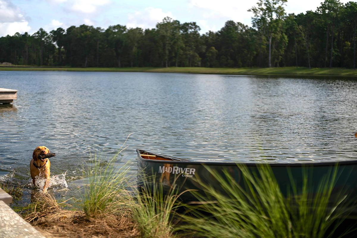 Carolina Park Homes For Sale - 1852 Agate Bay, Mount Pleasant, SC - 35