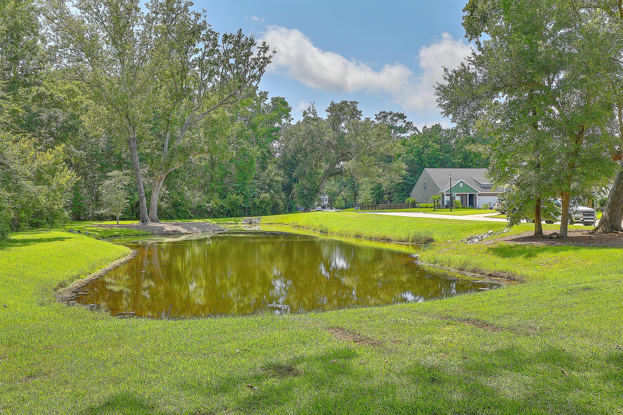 Tupelo Homes For Sale - 3912 Hanoverian, Mount Pleasant, SC - 5