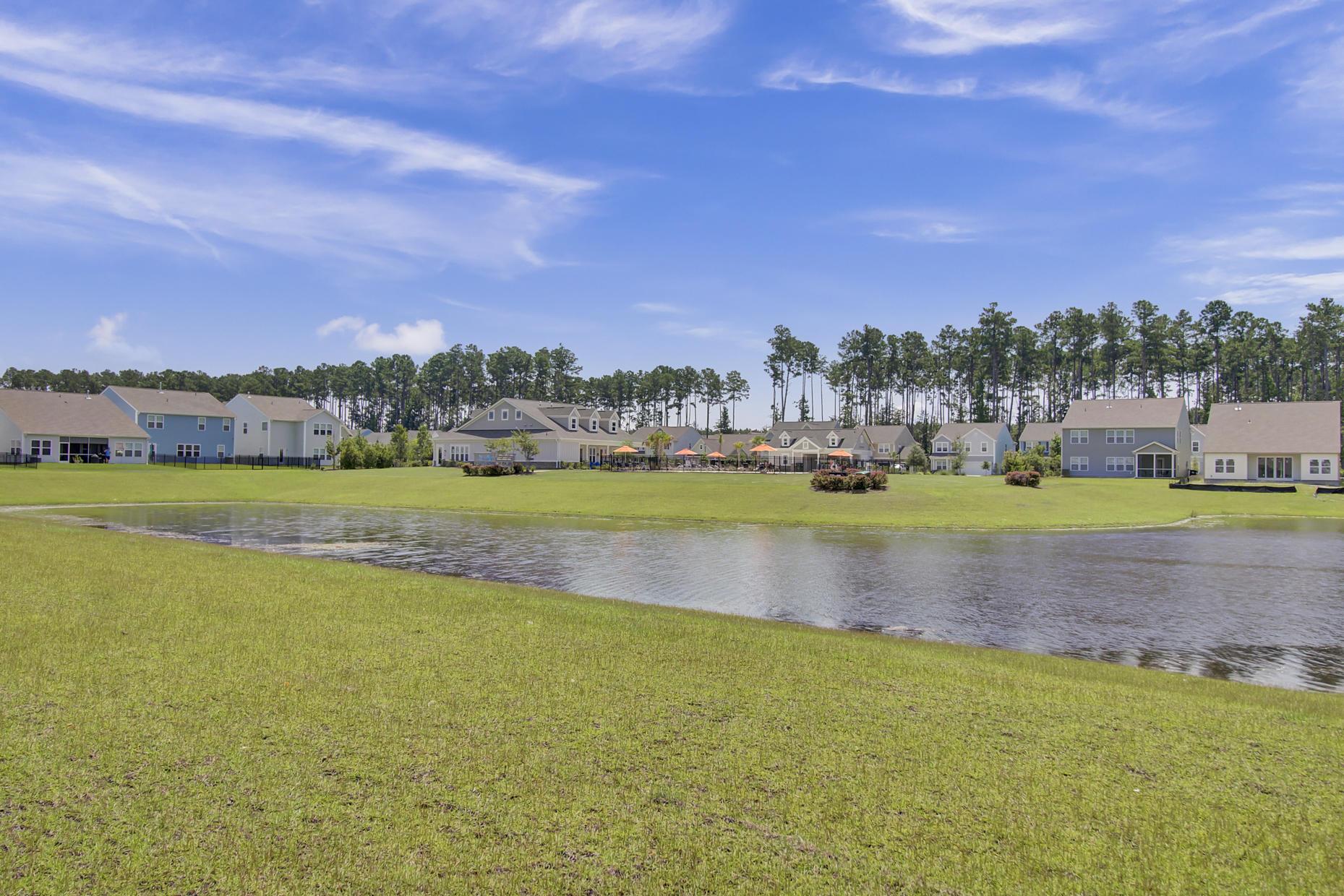 North Creek Village Homes For Sale - 384 Dunlin, Summerville, SC - 27